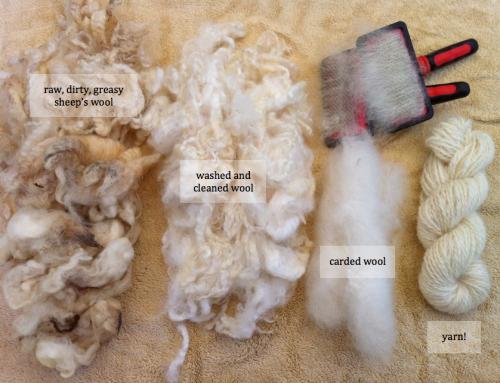 Workshop: Wie Rohwolle zu feinem Garn wird
